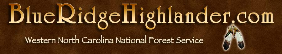 National Forest Services in the Blue Ridge and Smoky Mountains