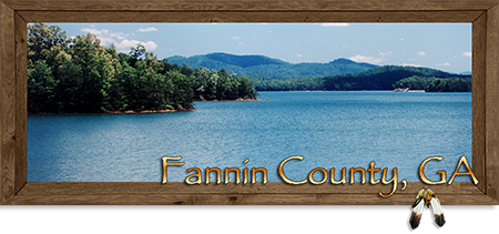 Real Estate in Blue Ridge, Dial, Aska Adventure Area, Morganton, McCaysville & Mineral Bluff in Fannin County Georgia