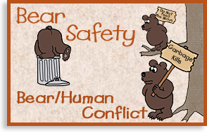 Bear and Human Conflict
