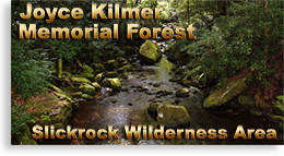 Joyce Kilmer Memorial Forest - Slickrock Wilderness Area