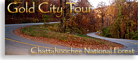 Gold City Tour