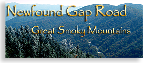 North Carolina's Newfound Gap Road