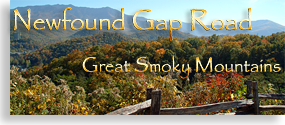 Tennessee's Newfound Gap Road
