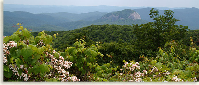 Looking Glass Rock on the Parkway