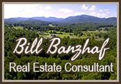 Bill Banzhaf, Real Estate Consultant