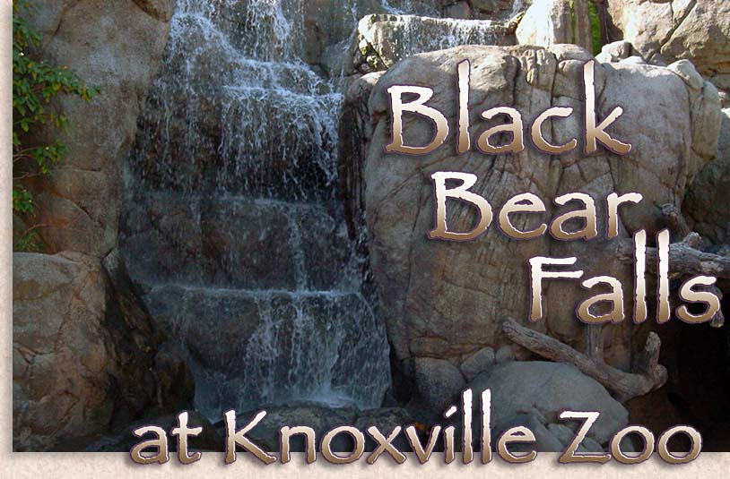 Black Bear Falls at Knoxville Zoo