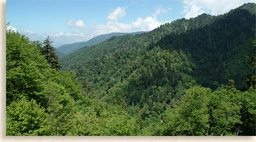 Great Smoky Mountains Rugged Landscape
