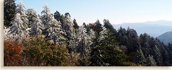 Smoky Mountains in the winter