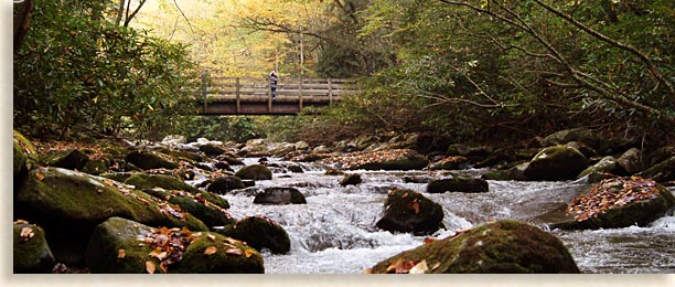 Quiet Walks in the Great Smoky Mountains along creeks and rivers