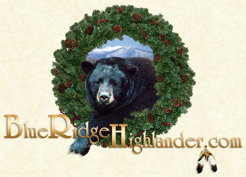 Blue Ridge Highlander Beary Bear