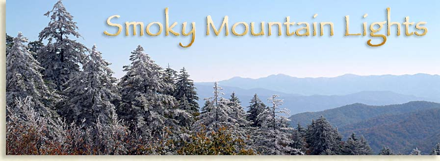 Smoky Mountain Winter