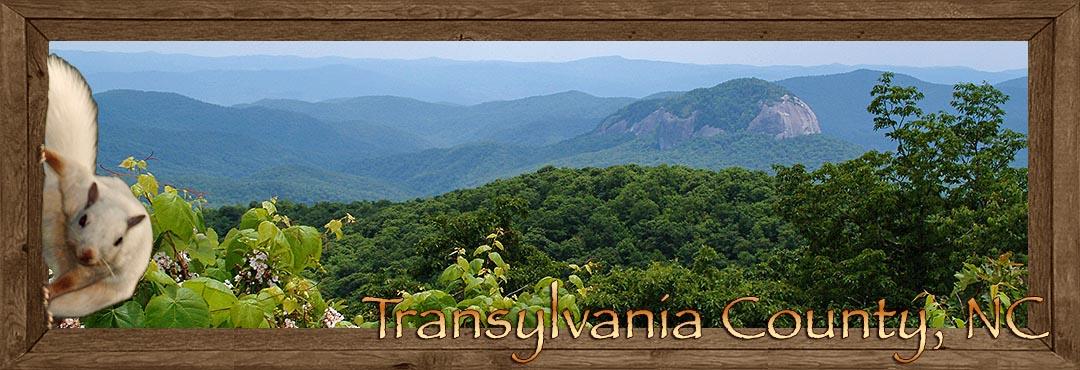 Brevard Lake Toxaway In Transylvania County In The