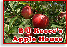 B J Reece's Apple House