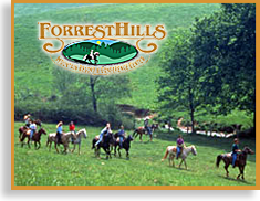 Forrest Hills Horseback Riding Stable