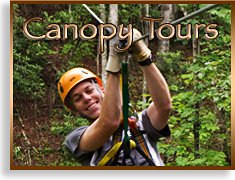 Canopy Tours on the Nantahala Gorge, Chattooga Ridge and Pigeon River