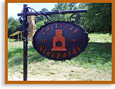 Cartecay Vineyard