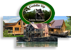 Cabin Rentals in the Blue Ridge North Georgia Area