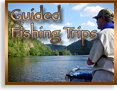 Fishing Trips in the Blue Ridge Smoky Mountains