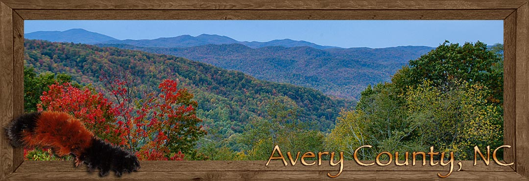 Avery County NC, home of the wooley worm festival