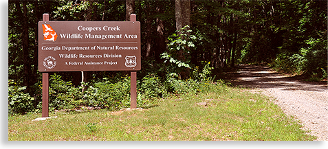 Coopers Creek and Mulky Creek Recreation Area and Wilderness