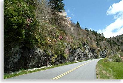 Blue Ridge Parkway - Cherokee to Asheville