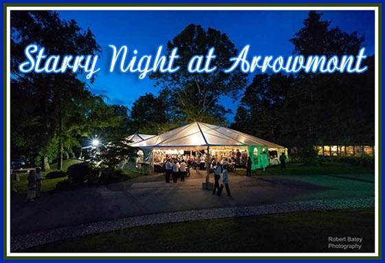 Arrowmont School of Arts & Crafts Starry Night