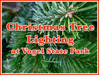 Christmas Tree LIghting at Vogel State Park