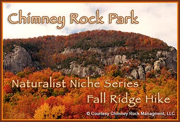 Chimney Rock Family Animal Encounters