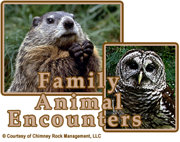Chimney Rock Family Animal Encounters
