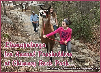 Chimney Rock Llamapalooza