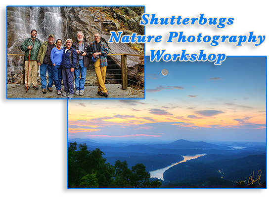 Shutterbug Photo Workshop