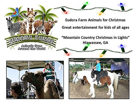 Eudora Farm Animals for Christmas