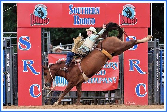 Georgia Mountain Fair Rodeo