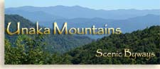 Unaka Mountains - Unicoi Mountain Wilderness