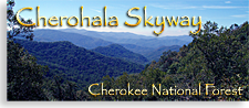 Cherohala Sky in the Tennessee Mountains