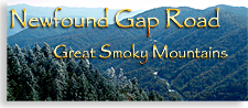 New Found Gap in the Smoky Mountains of Western North Carolina