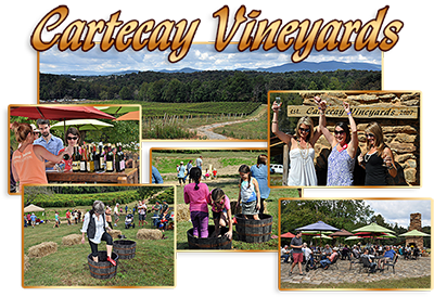 Cartecay Vineyards Crush Festival