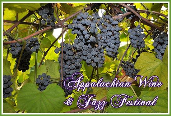 Appalachian Wine Festival