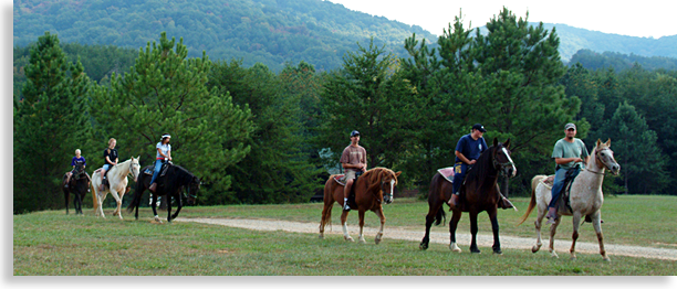 Horseback Riding in Blue Ridge, McCaysville, Aska Adventure area of Fannin County