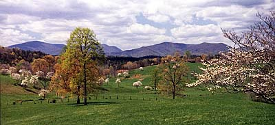 fannin county mountains