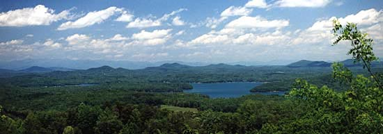 Fannin County with Lake Blue Ridge