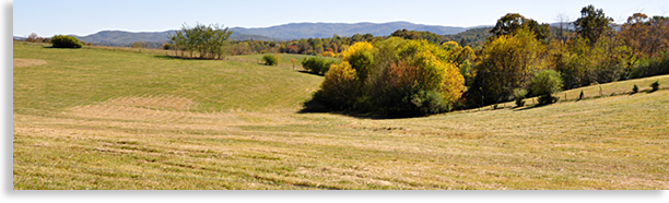 South Gilmer County Meadows and Mountains