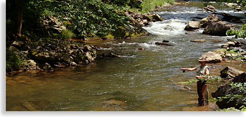 Fly Fishing on the Nantahala