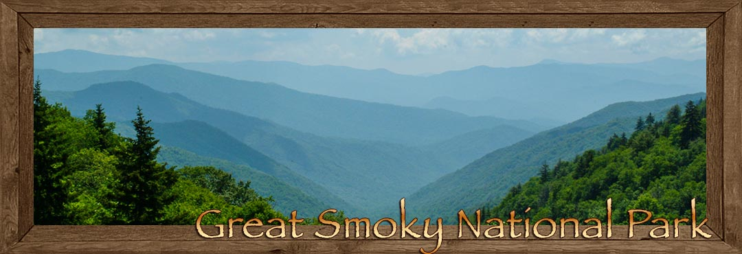 Great Smoky Mountain National Park