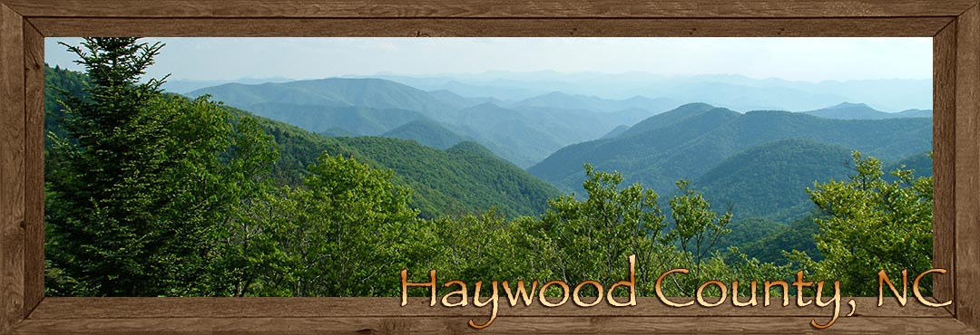 haywood county singles View all haywood county, nc hud properties available for purchase find a government hud home in haywood county for a property below market value hudcom has the most up-to-date list of hud homes for sale in north carolina.