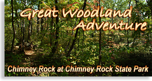 Great Woodland Adventure