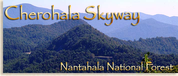 Cherohala Skyway in Western North Carolina - Scenic Highlander Driving Tours