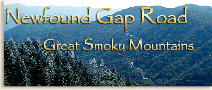 Newfound Gap Road in the Western North Carolina - Scenic Highlander Driving Tours