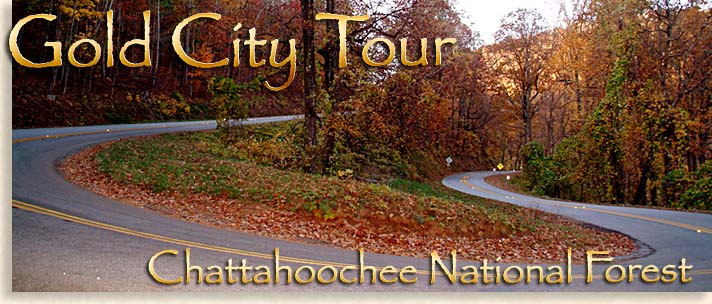 Gold City Tours from Dahlonega to Blairsville