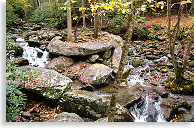 Creeks and Rock Formations in the Smokies